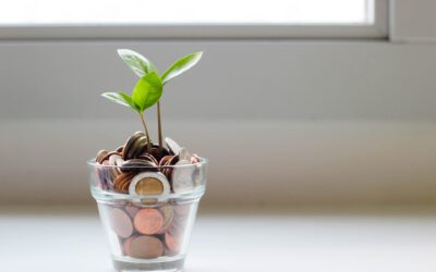 Take Action With Your Wallet | How Your Investments Could Impact the Future of the Planet